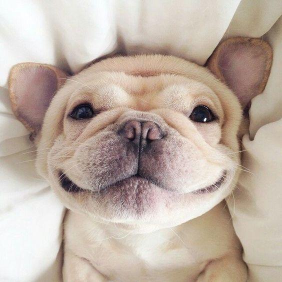 smilekind
