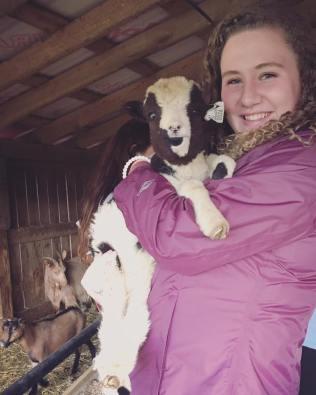 goat4